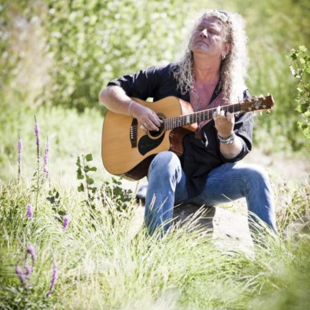 Peter-lavaleeverte-gitaar